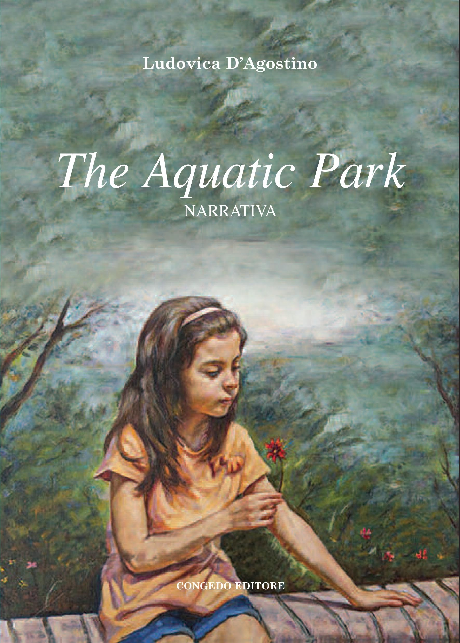 The Aquatic Park. Narrativa